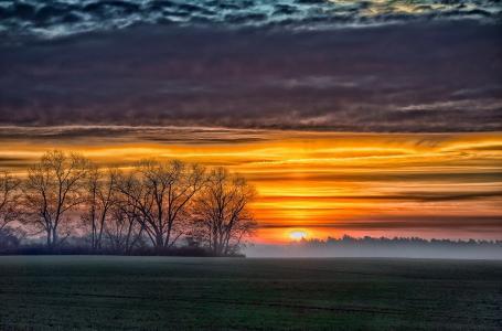 天堂别致,美女,夕阳,天空,云,地平线,场,树,剪影