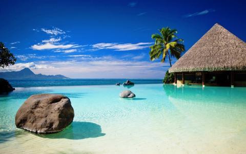 夏天,自然,山,热带地区,度假村,休息,积极,手掌,海洋,沙滩,酒吧,积极