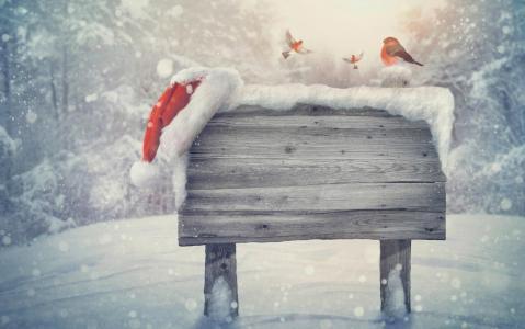 新的一年,指针,帽,降雪,树木,明亮的背景,假期