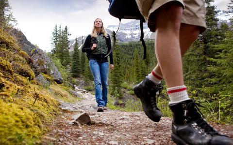 远足,步道,人,鞋,绿色旅游