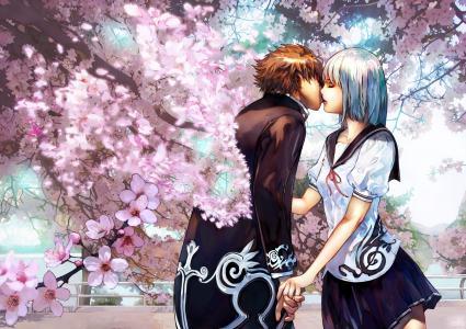 樱桃吻,盛开的樱花,吻,情侣,恋人