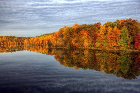自然,秋,湖,树,森林,水,反射,美丽