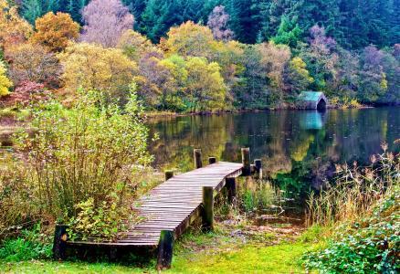 苏格兰,性质,秋季,树,森林,湖,桥