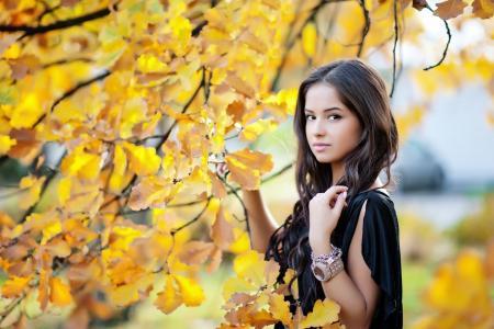 女孩,构成,看,秋天,黄叶,美女