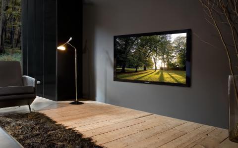 室内,风格,等离子面板,先锋,落地灯,沙发,花瓶,羊毛,地板,板