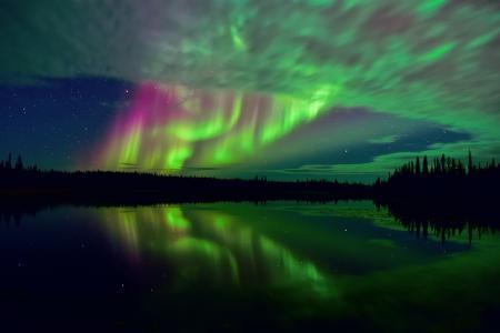 北加拿大,北极,苔原,北极光,天空,星星,夜晚,湖泊,森林,反射,曝光