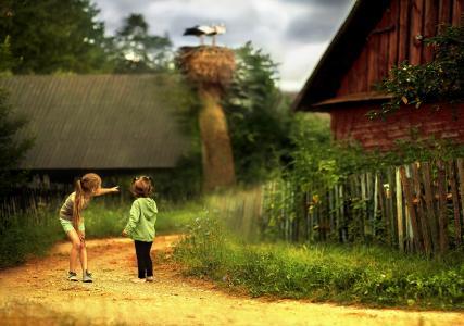 姐妹,女朋友,街道,村庄,山寨,鹳