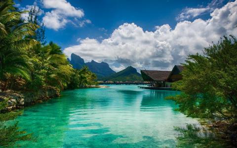 度假村,热带,山,美女,棕榈树