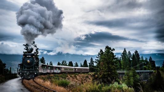 火车,树木,火车,树木