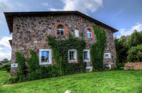 房子,常春藤,村庄,德国,壮观