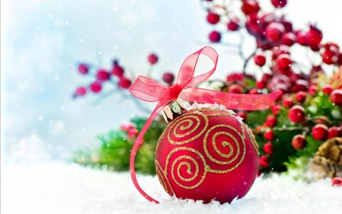 与装饰,球,雪,红色,红色,宏,浆果,球,雪