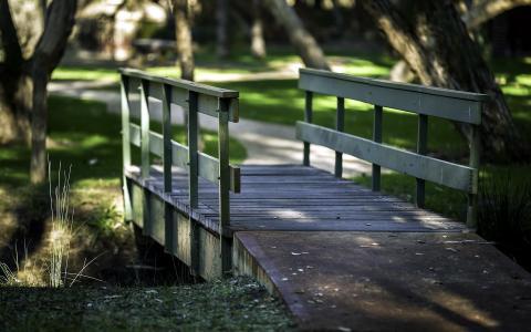 路,桥,公园