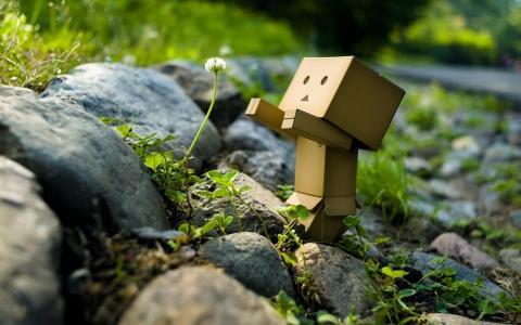机器人,绵延,花卉,创意