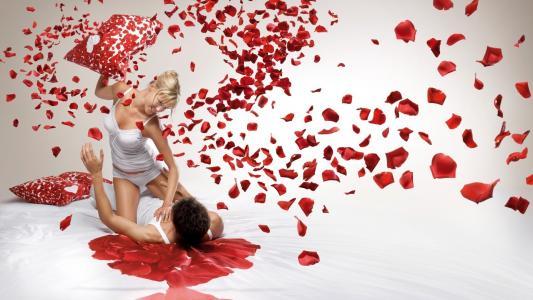 金发碧眼的人,家伙,玫瑰花瓣,枕头,爱情