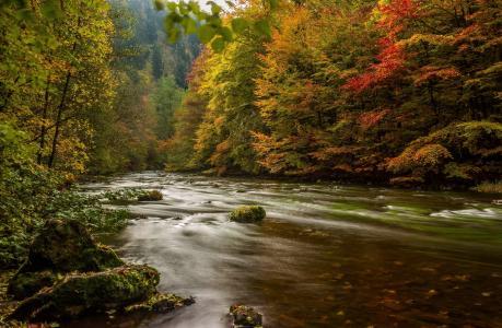 秋天,山河,森林,山,美丽