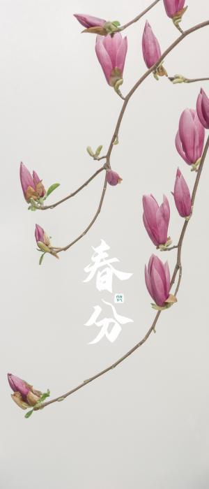 传统春分节气唯美配图