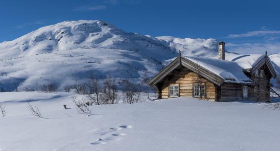 挪威,冬天,小屋,小山,雪,自然