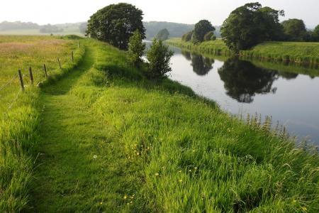 自然,夏天,英国,河,草,路径