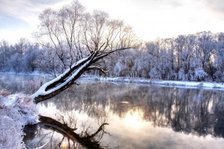 仙境,自然景观,寒冷的季节,科,冻结的森林,冬季,冬季河流