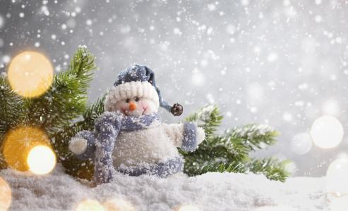 假日,新年,圣诞节,雪,分支机构,云杉,毛皮树,玩具,雪人