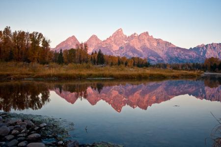 秋天,森林,晚上,反射,池塘,树木,山