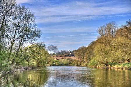 河流,树木,桥梁,蒸汽机车,景观