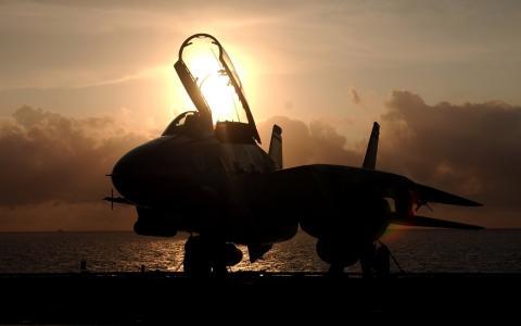 tomcat,日落,F-14