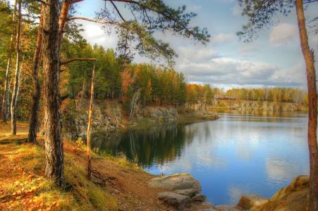自然,河流,湖泊,水,松树
