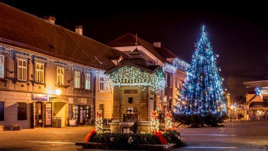 城市,灯,萨格勒布,夜,新年,灯,广场,度假,房屋,圣诞树,克罗地亚