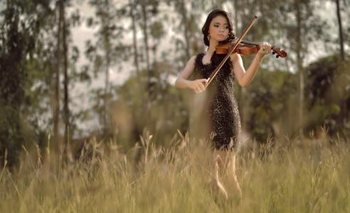夏天,小提琴,场,音乐,女孩