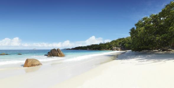 塞舌尔,沙滩,大自然