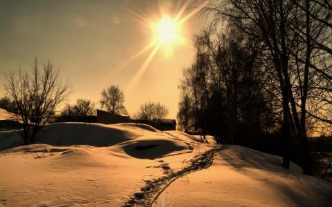 雪,冬季,村庄,冬季的一天,树木