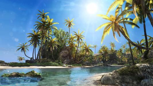 热带地区,棕榈树,阳光灿烂的日子,海滩