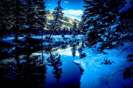 圣米格尔河,科罗拉多州,冬季,河流,树木,景观