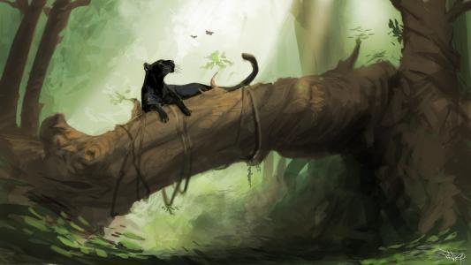 豹,黑色,Bagheera,森林,丛林,蝴蝶