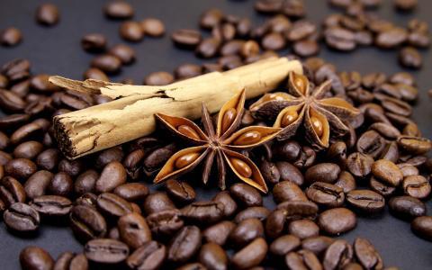 咖啡粒,肉桂,玉米,树枝