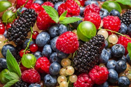 浆果,黑莓,覆盆子,鹅莓,蓝莓
