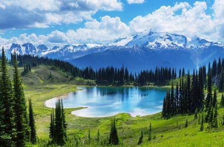 森林,湖,加拿大,景观,湖,班夫国家公园,冰。