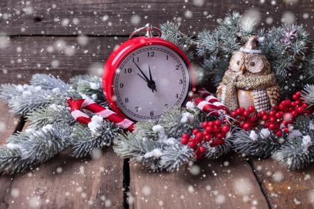 板,装饰,分支机构,杉木,圣诞树,假期,新年,圣诞节,雪,浆果,玩具,猫头鹰,闹钟,闹钟
