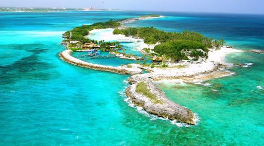 岛,性质,度假村,热带地区,棕榈树,海洋,休息,积极