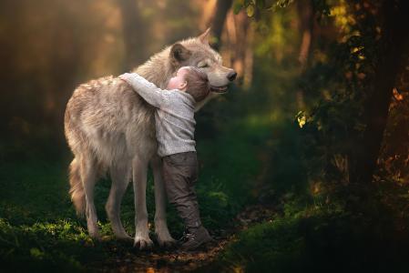 狼,创意,照片,孩子,男孩,朋友,积极,性质