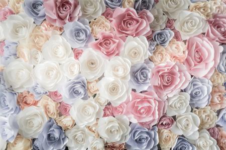 纹理,鲜花,玫瑰