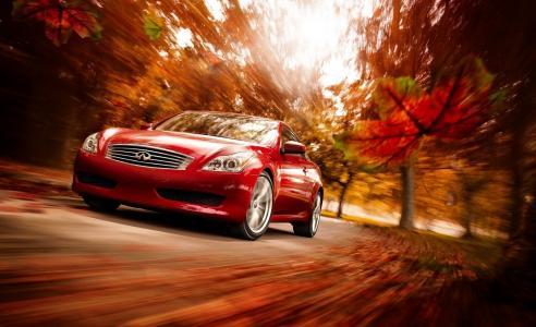 英菲尼迪,红色,秋天,自然,美丽,速度,运动