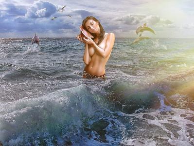 女孩,贝壳,海豚,海洋,天空