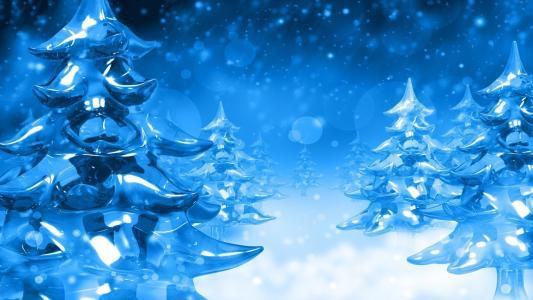 枞树,冰,雪,霜