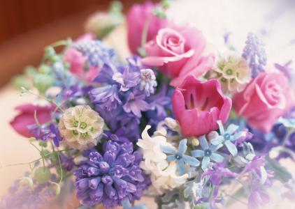 组成,鲜花,花束,许多