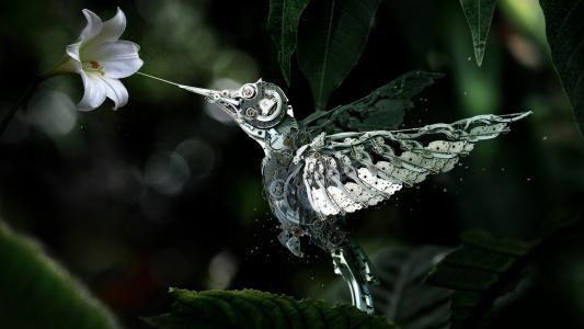 机器人,机制,蜂鸟,花卉