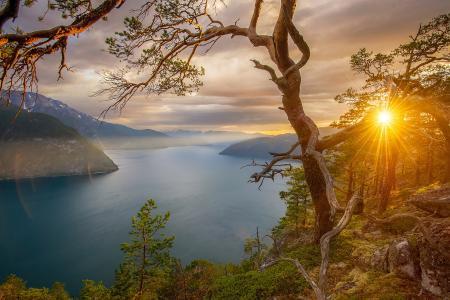 性质,夏天,挪威,峡湾,山,岩石,太阳,光线,日落