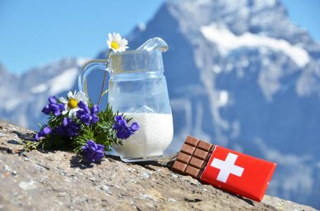 洋甘菊,瑞士,牛奶,阿尔卑斯山,鲜花,巧克力