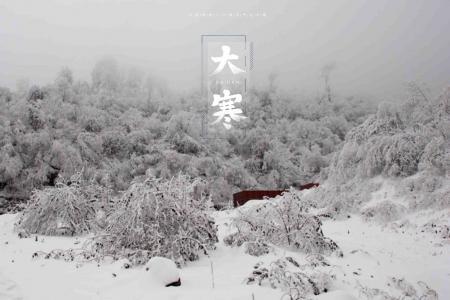 大寒时节唯美迷人雪景风光